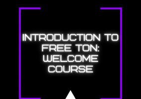 TON Surf: Welcome guide
